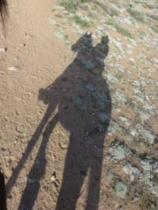 DawnHoof Shadow