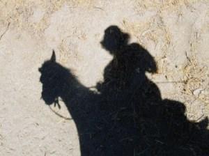 shadow-dawn-angel